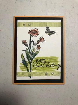 Butterfly Basics 1